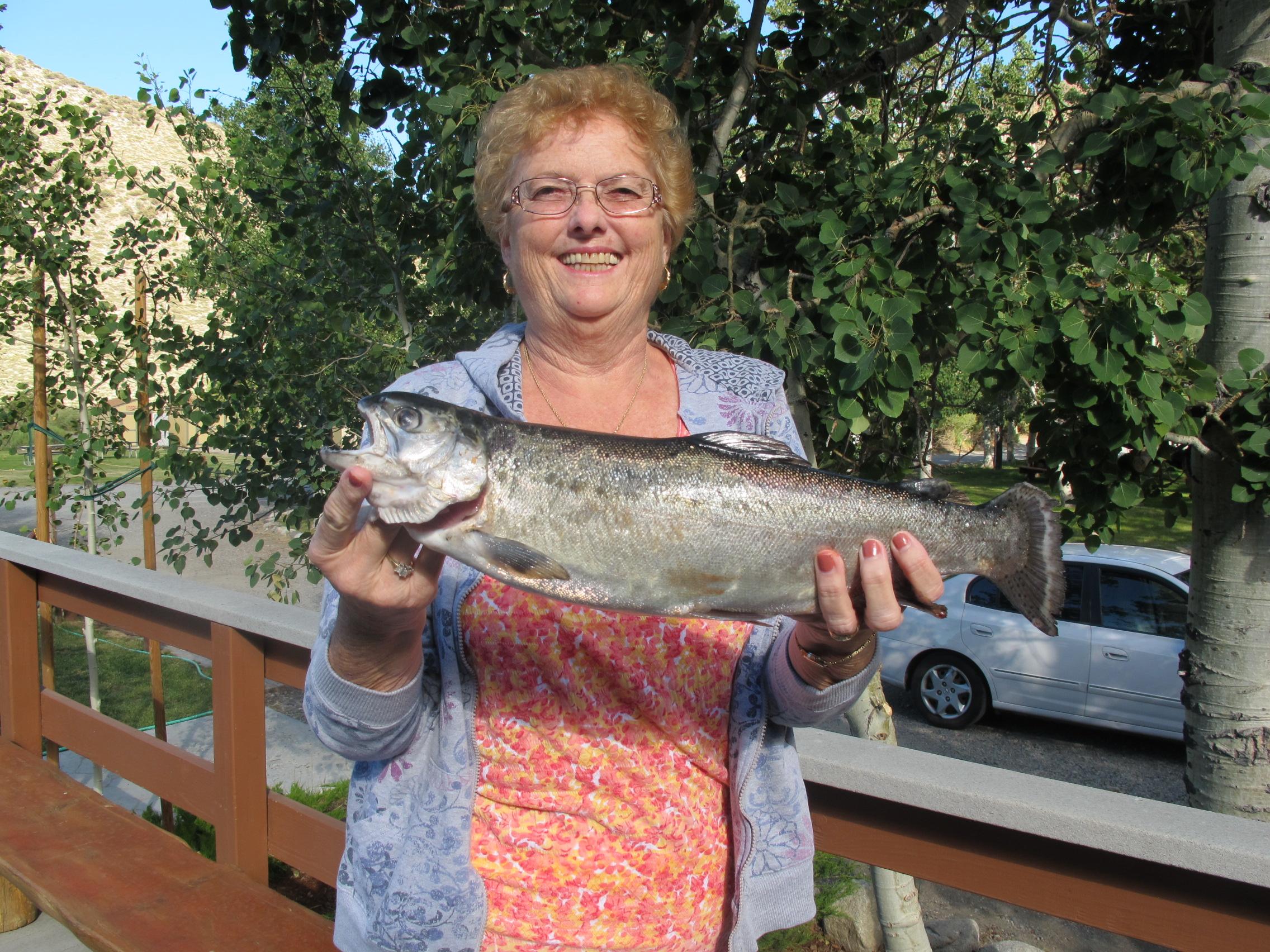 Convict lake fishing report june 29 2013 convict lake for June lake fishing report