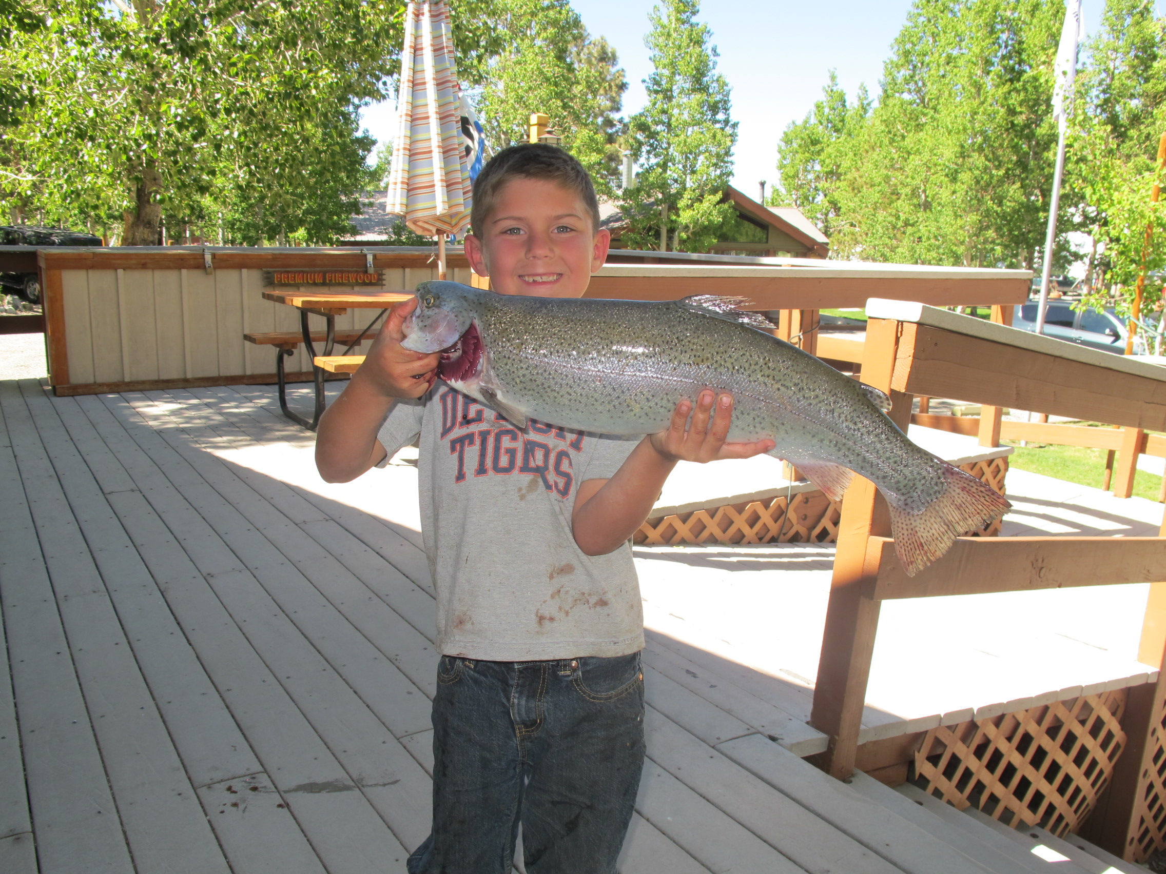 fishing report june 1 2013 convict lake resort