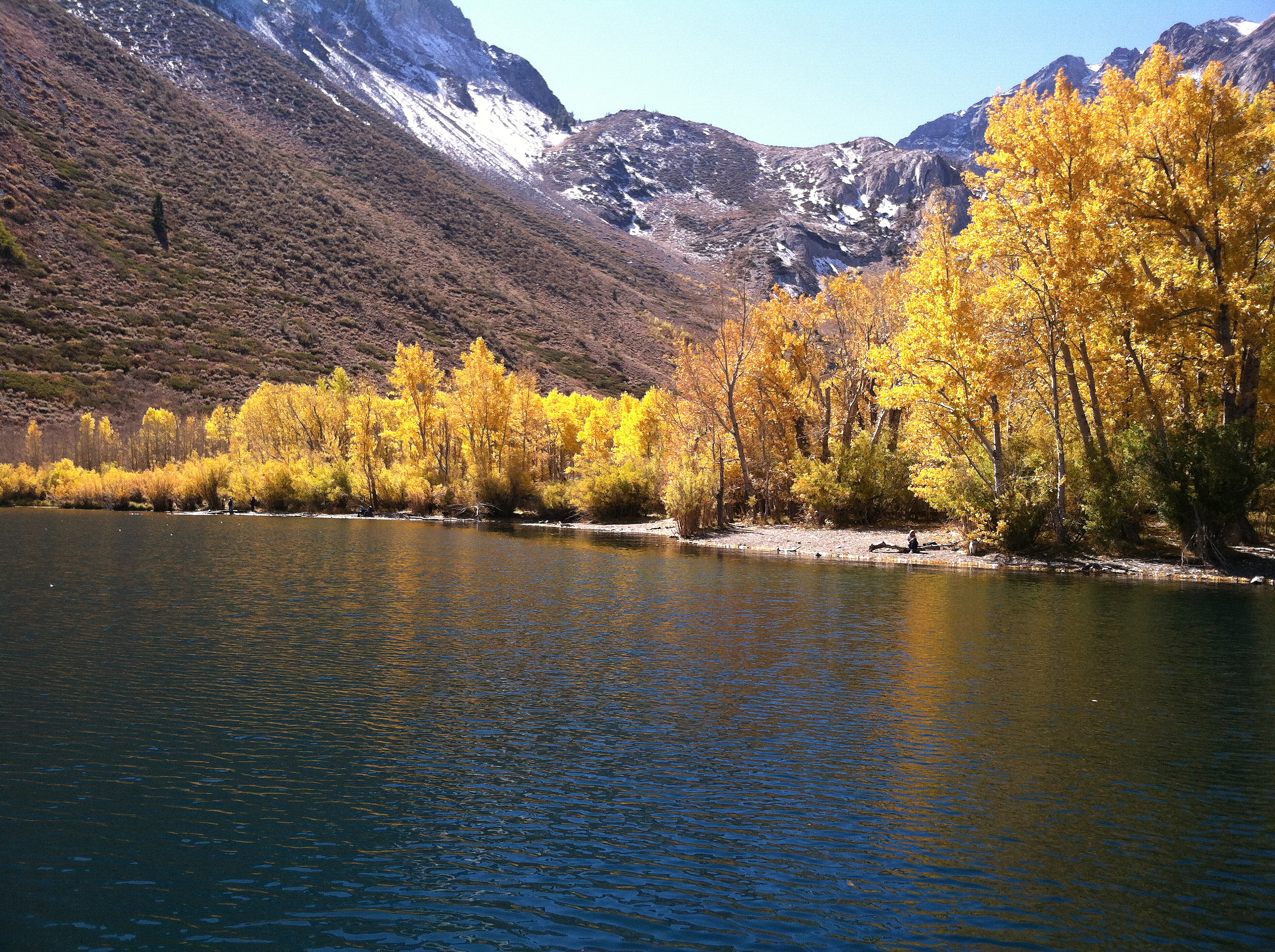 Convict canyon fall colors report convict lake resort for Canyon lake fishing ca