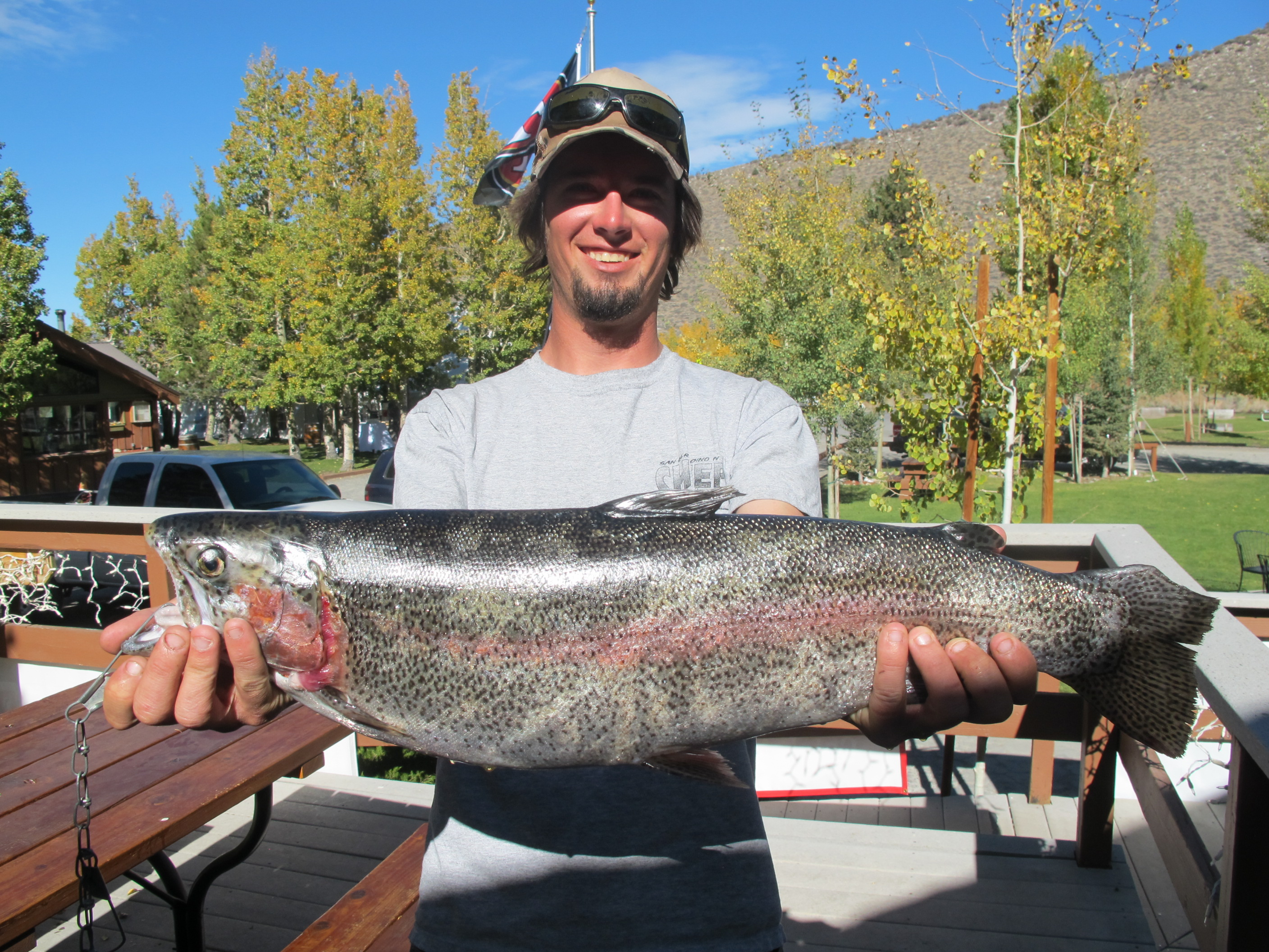 Fishing report for october 18 2014 convict lake resort for Convict lake fishing report