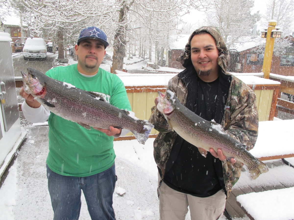 2015 fishing opener weekend review convict lake resort for Convict lake fishing report